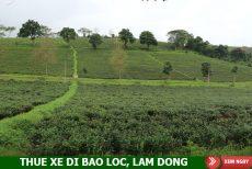Thuê xe 16 chỗ đi Bảo Lộc, Lâm Đồng