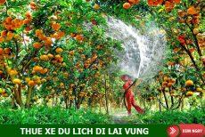 Thuê xe du lịch đi Lai Vung, Đồng Tháp