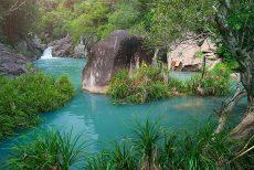 Thuê xe 7 chỗ đi Vườn Quốc Gia Núi Chúa, Ninh Thuận